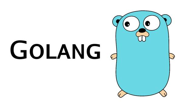 Hire Golang Developers